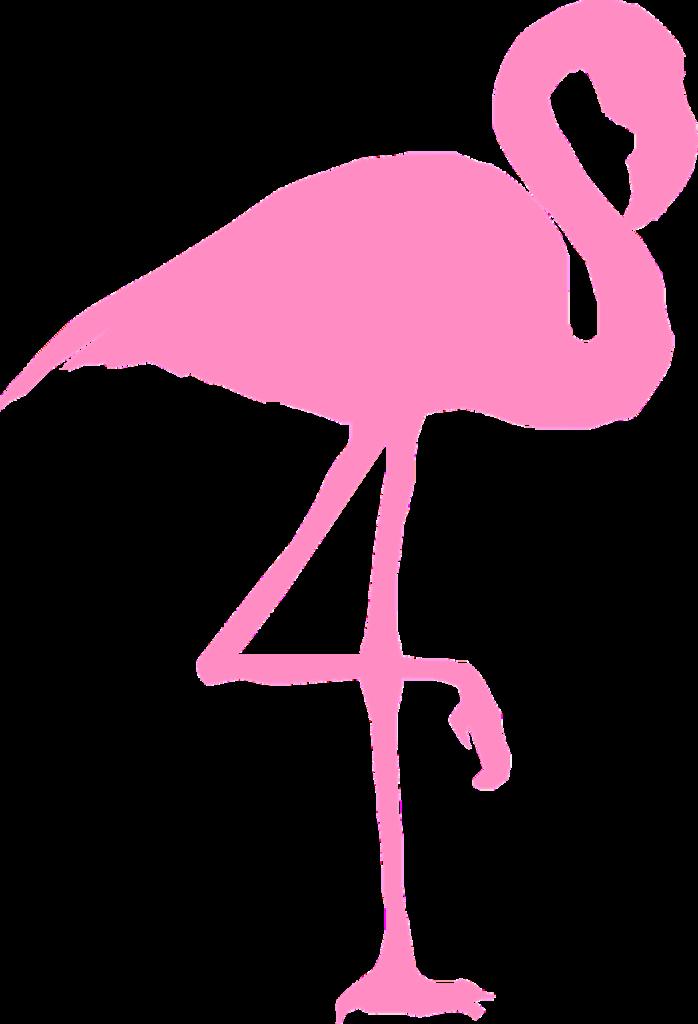 flamingo-310950_1280