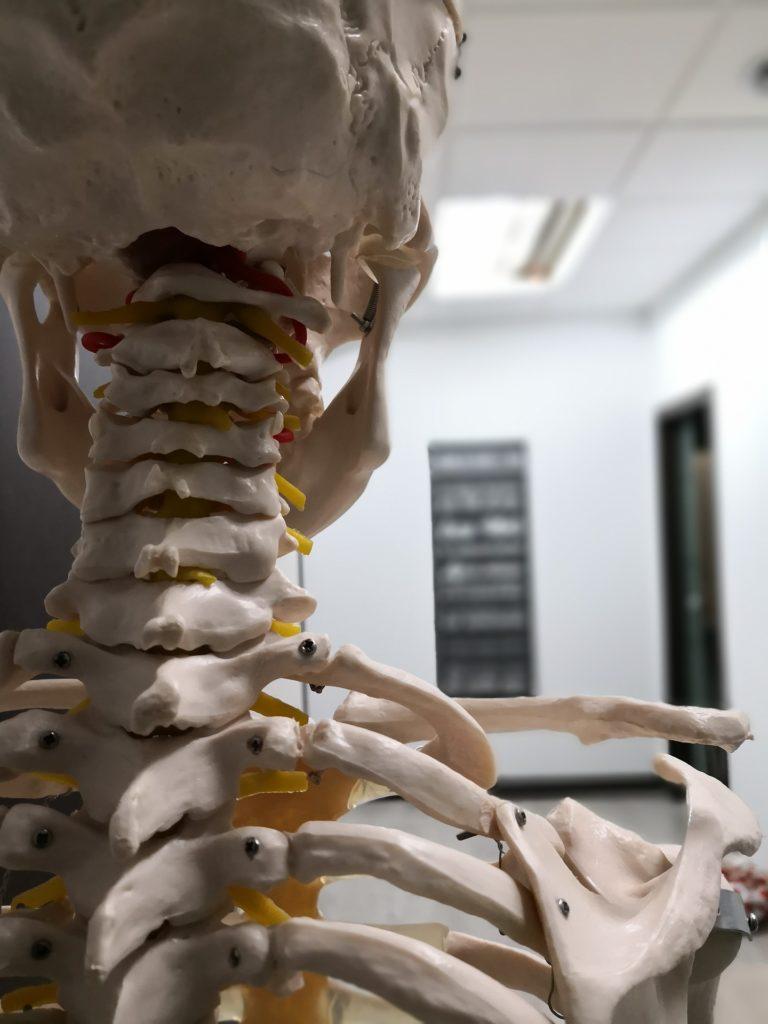 osteopatia-cefalea